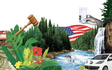 Graphic collage with river, electric car, water glass, gavel, and plants
